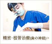 精密・根管治療(歯の神経)
