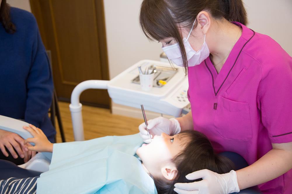 予防歯科の徹底