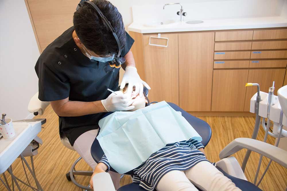 歯科医師と矯正歯科専門医