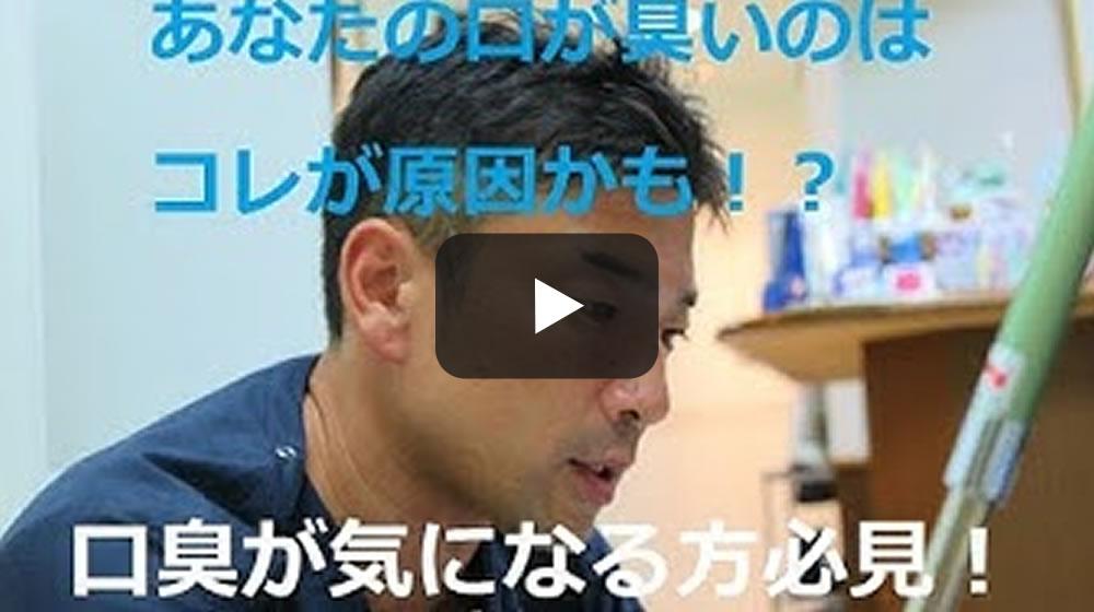 歯科医が教える動画
